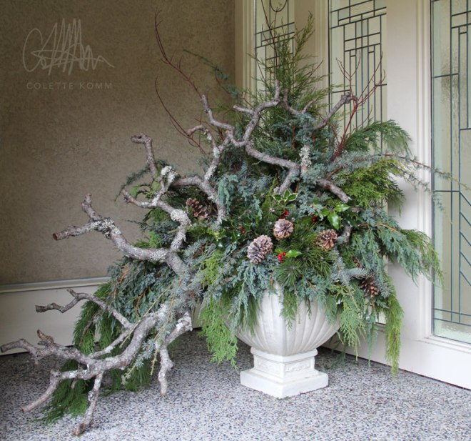 winter-foliage-1