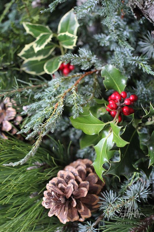 winter-foliage-2